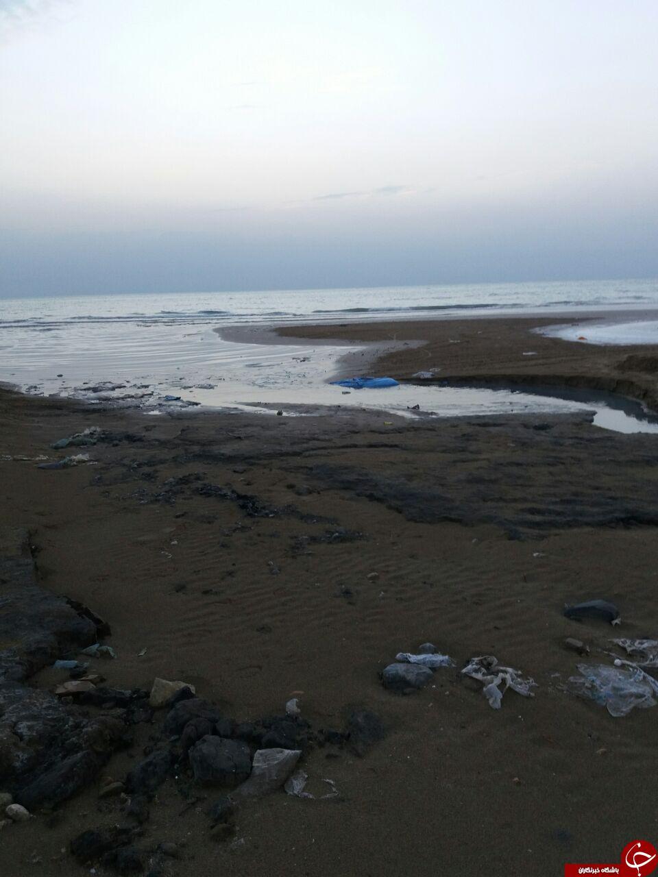 ورود فاضلاب بندر گناوه به دریا + فیلم و تصاویر