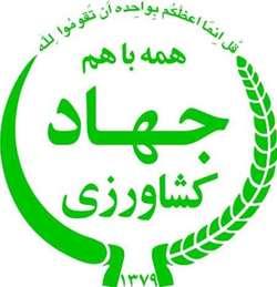 ترسیم برنامه عملیاتی افزایش ضریب خوداتکایی محصولات اساسی در استان