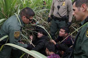 جنایتی که ترامپ در حق کودکان مهاجر انجام داد