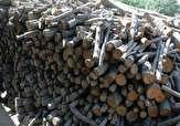 باشگاه خبرنگاران -انهدام باند قاچاق چوب در خاش