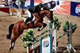 باشگاه خبرنگاران -برترینهای پرش با اسب بوشهر مشخص شدند