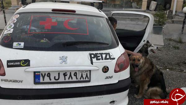 هلال احمر هیچ سگ زندهیابی را نمیفروشد