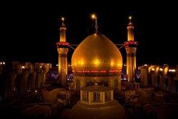 ماجرای عجیب موریانه خوردن ستونهای گنبد امامحسین(ع)+ تصویر