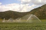 باشگاه خبرنگاران -بهره برداری از ۹ طرح کشاورزی در شهرستان بروجن