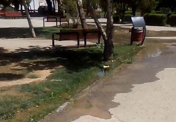 باشگاه خبرنگاران -آبیاری غیراصولی فضای سبز و هدررفت آب شرب + فیلم