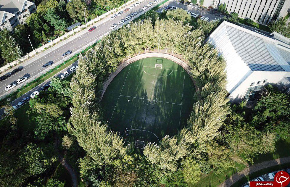 عجیب و غریبترین استادیومهای دنیا+ تصاویر