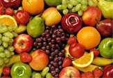 کمبودی در تامین میوه های تابستانه نداریم