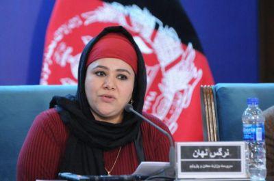 وزارت معادن افغانستان: برخی نمایندگان مجلس در استخراج غیر قانونی معادن دست دارند