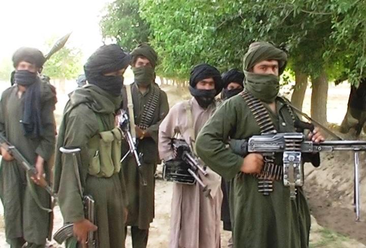 کشته شدن مقام ارشد نظامی طالبان در ننگرهار