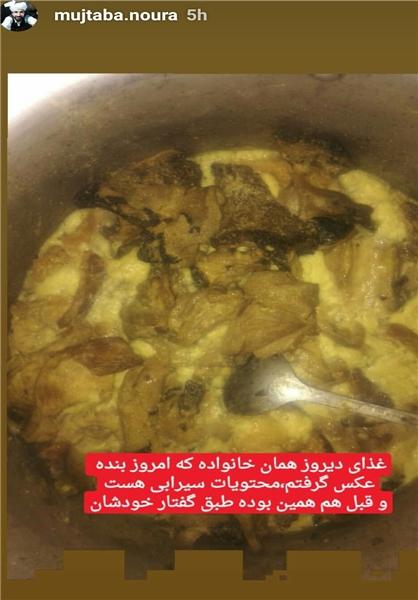 «از شایعه تا واقعیت»/ماجرای خوردن گربه در جنوب ایران چیست؟