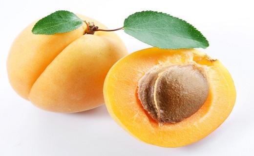 دانه تلخ زردآلو را نخورید/ بدترین شکستگی ها کدام است/ خطر دود کباب برای سلامتی/ نمک هایی که برای سلامتی مضر اند