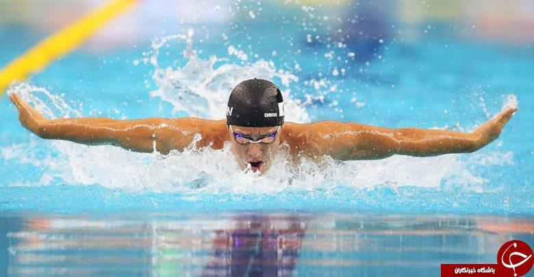 معرفی ماهیچههای درگیر در ورزش شنا / چطور با شنا کردن لاغر شویم؟ / فواید آب درمانی