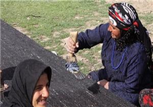 زن چادرنشینی که ۸ میلیارد تومان بدهی مالیاتی دارد!
