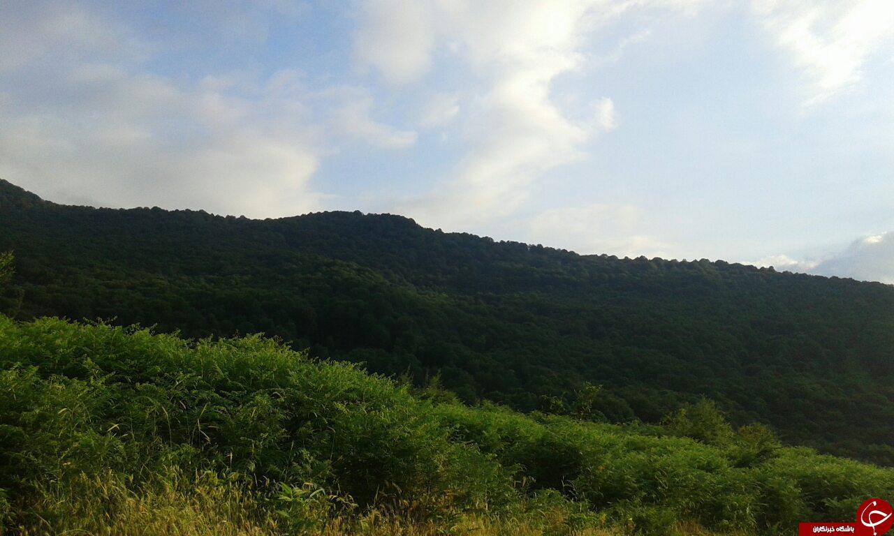 تصویرهایی از طبیعت جذاب در روستای درهدشت