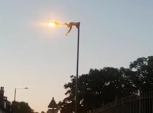 گیر کردن عجیب مرد جوان در بالای تیر چراغ برق! فیلم//
