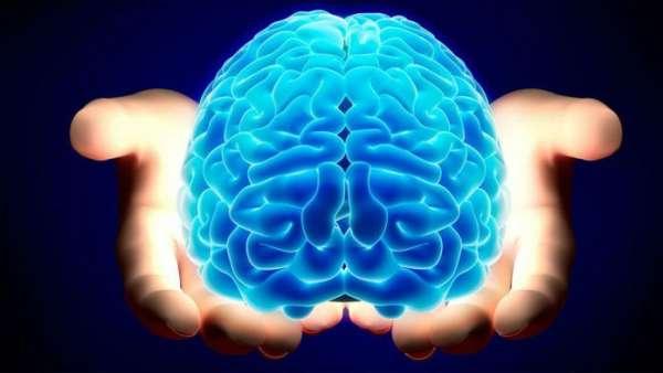 گوش دادن به موسیقی چه تاثیری بر مغزتان دارد؟