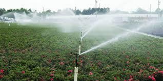 توسعه کشاورزی در مناطق مختلف دره شهر