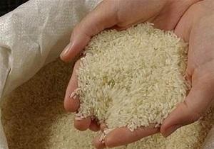 ۳۷۹ هزار تن برنج وارد کشور شد/ کاهش ۷ درصدی واردات//// روااابط عمومی