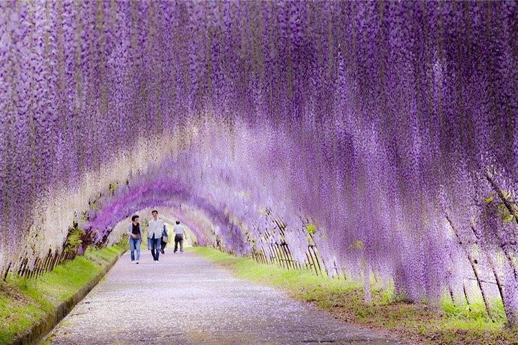 جاده هایی که توجه شما را به خود جلب می کند + تصاویر
