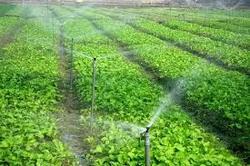 بیش از 70 درصد مصرف انرژی برق در بخش کشاورزی صرف میشود