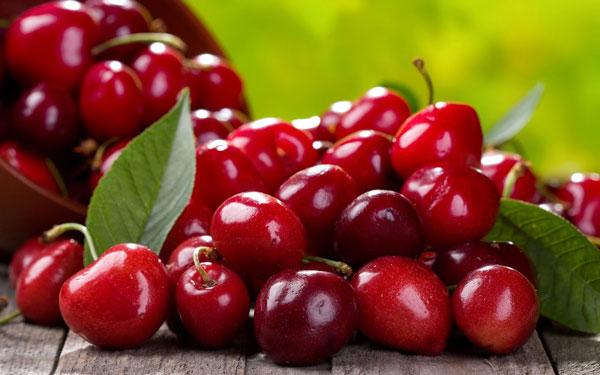 با ۷ خواص شگفتانگیز میوه آلبالو برای سلامتی بدن آشنا شوید