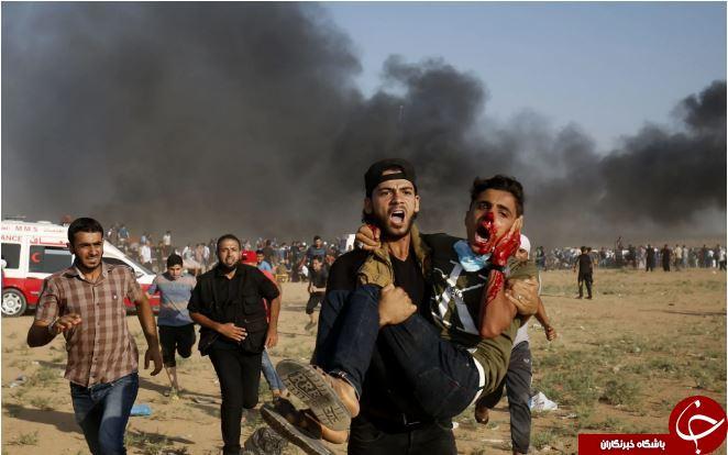 تصاویر روز: از تظاهرات فلسطینیها با نیروهای صهیونیست تا تظاهرات علیه گاوبازی در اسپانیا