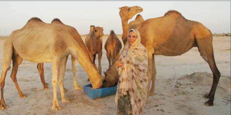 اولین زن شتردار ایرانی که بدون شترهایش نمی تواند زندگی کند+