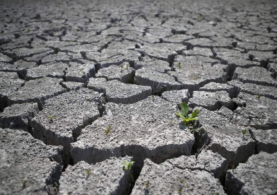 آیا زمین برای زندگی نامساعد می شود