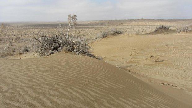 وجود 1400 هکتار عرصه دارای فرسایش بادی در شهرستان کوهبنان