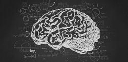 ٥ آسیبدیده مغزی که متحول شدند + 18