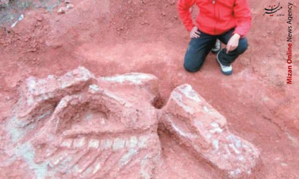 کشف استخوان دایناسور ۲۰۰ میلیون ساله + عکس