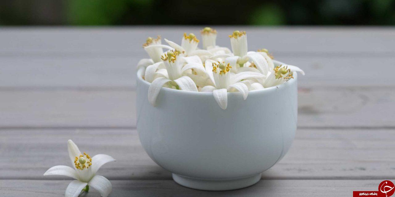 معرفی ویژگیهای درمانی عسل بهارنارنج + مضرات و نحوه مصرف