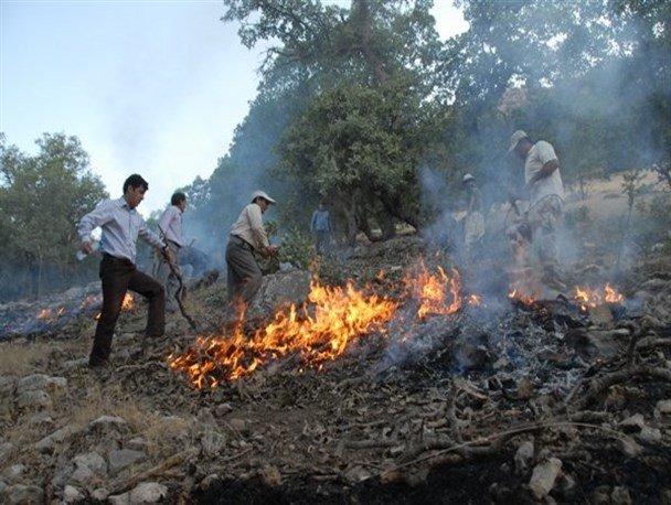 آتشسوزی زمینهای دامنه جنوبی کوه شاهدژ چهاردانگه ساری مهار شد/ 2 هکتار از مراتع در آتش سوخت