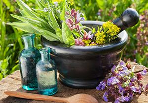 افزایش ۱۵ درصدی صادرات انواع گیاهان دارویی از فارس