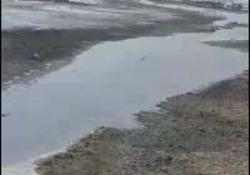 فیلمی از آلودگی زیست محیطی در روستای سعیدآباد