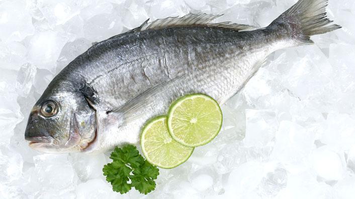 باشگاه خبرنگاران -دستورالعملهای خرید یک ماهی تازه
