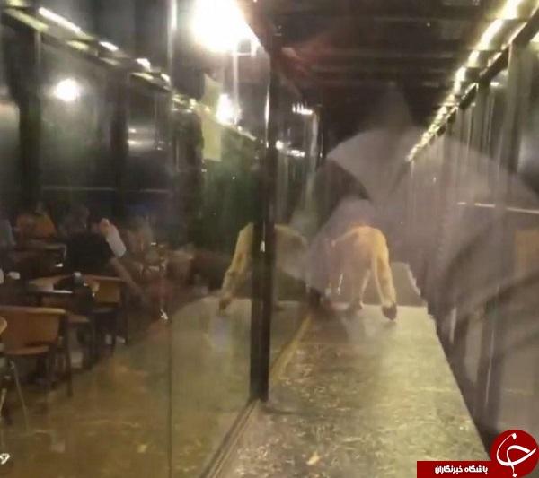 اقدام خطرناک رستوران دار ترک برای جذب مشتری +فیلم