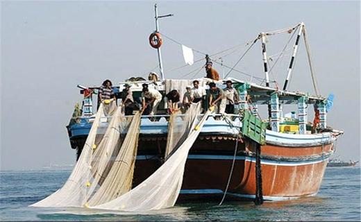 ممنوعیت صید میگو برای کشتیهای صیادی / اجرای طرح دریابست تا پایان تیرماه