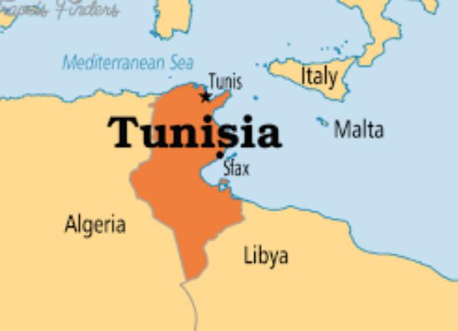 وزیر حقوق بشر تونس از سمت خود کنارهگیری کرد