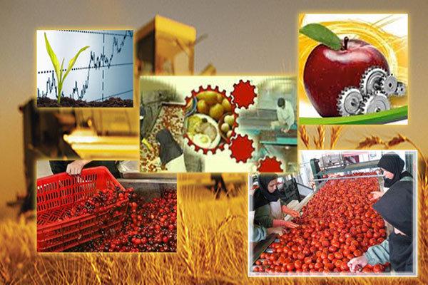 هزارو 766 تن محصول کشاورزی از زنجان به 8 کشور صادر شد