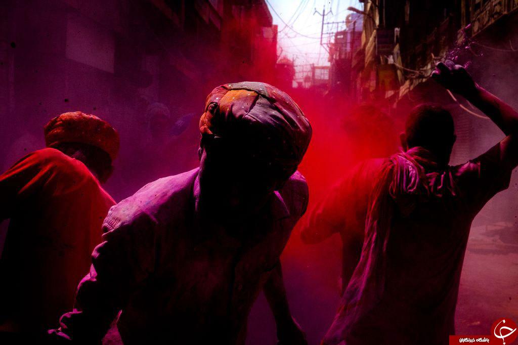 جنگ رنگی در عکس روز نشنال جئوگرافیک