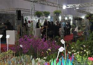 افتتاح نخستین نمایشگاه گل و گیاه وسوغات و هدایا در ساری