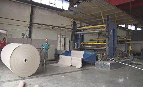 باشگاه خبرنگاران - جلوگیری از قطع 153 هزار درخت از طریق بازیافت کاغذ