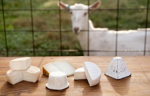 خوراکیهای مرگ آور/چرا نباید به چشمان دست زذ/خواص پنیری که از دل کوه بیرون میآید/ چگونه میتوان روده را پاکسازی کرد؟