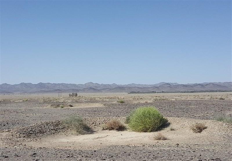 ساخت ۳۰ هزار هلالی آبگیر در دشتستان