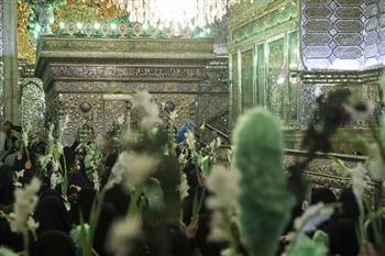 راهپیمایی بانوان شیرازی از مرقد