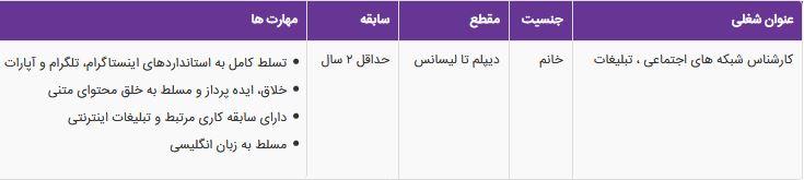 استخدام کارشناس شبکه های اجتماعی ، تبلیغات خانم در تهران