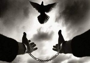 شاکیان همدانی بیش از 15 میلیارد ریال از بدهی زندانیان را بخشیدند