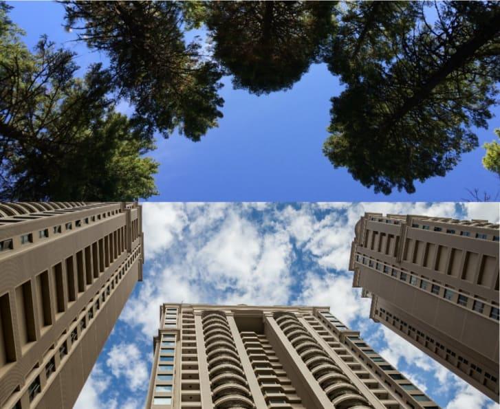 نگاه کردن به ساختمانهای بلند چه عوارضی بدنبال دارد؟