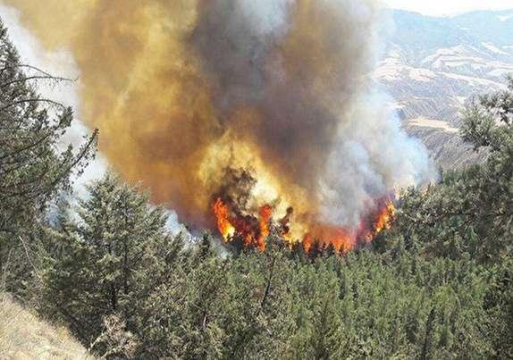 تلاش برای مهار آتش سوزی در برز ادامه دارد